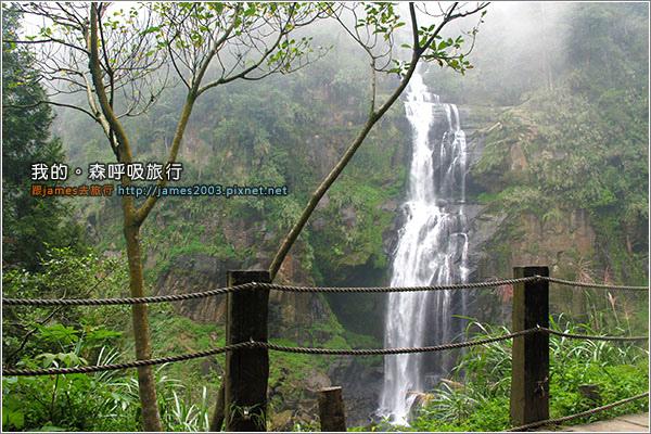 [南投景點] 我的森呼吸旅行-杉林溪17.JPG