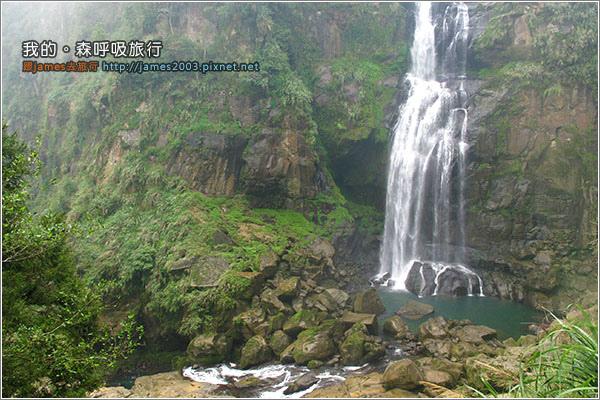 [南投景點] 我的森呼吸旅行-杉林溪18.JPG