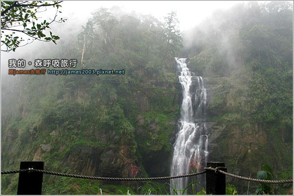 [南投景點] 我的森呼吸旅行-杉林溪19.JPG