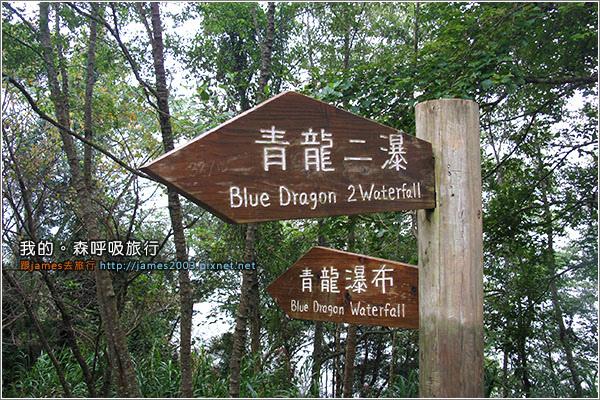 [南投景點] 我的森呼吸旅行-杉林溪20.JPG