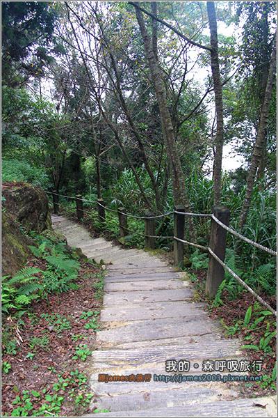 [南投景點] 我的森呼吸旅行-杉林溪21.JPG