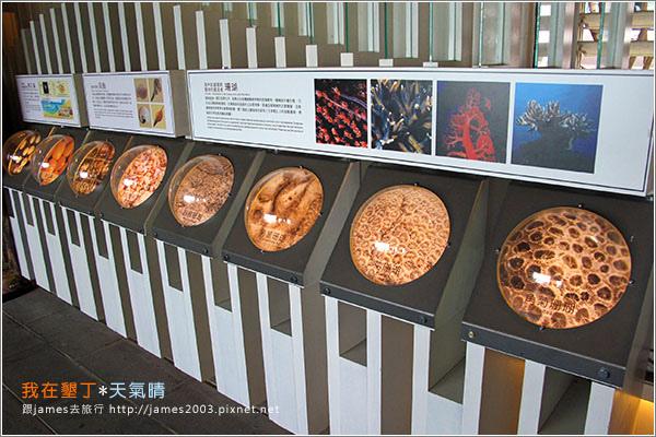 [墾丁景點] 貝殼砂的天堂-砂島(貝殼砂展示館)007