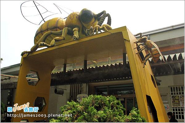 古坑景點-綠色隧道-蜜蜂故事館13.JPG