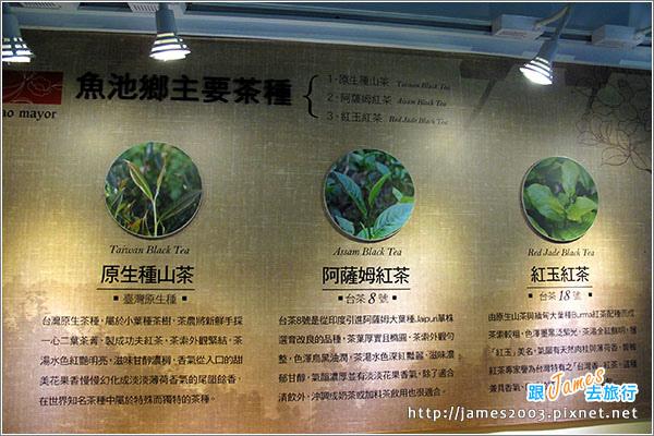 【南投魚池】日月潭-廖鄉長紅茶故事館、紅玉的花茶店07.JPG