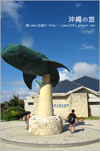 【沖繩之旅】海洋博公園-沖繩美麗海水族館04.JPG