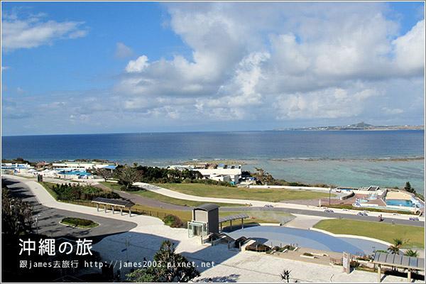 【沖繩之旅】海洋博公園-沖繩美麗海水族館05.JPG
