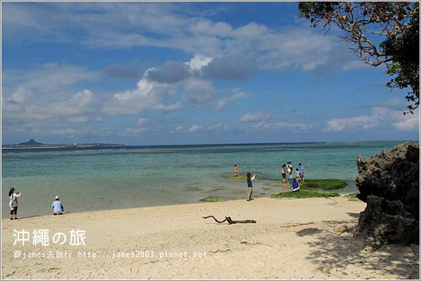 【沖繩之旅】海洋博公園-沖繩美麗海水族館44.JPG