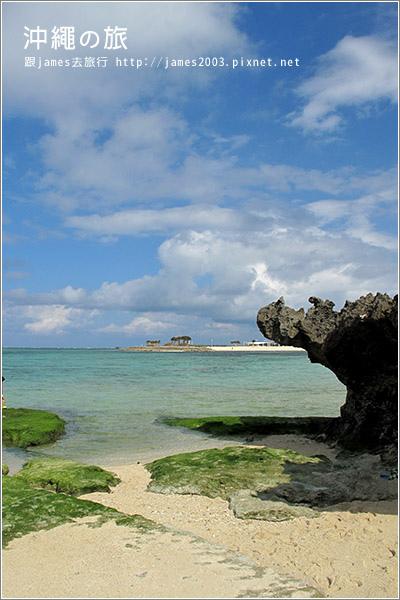 【沖繩之旅】海洋博公園-沖繩美麗海水族館45.JPG