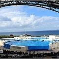【沖繩之旅】海洋博公園-沖繩美麗海水族館49.JPG