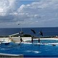【沖繩之旅】海洋博公園-沖繩美麗海水族館50.JPG