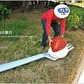 【台南私房景點】南科-台積電-幾米公園25.JPG