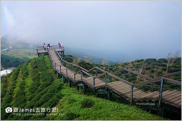 【南投旅遊】銀杏森林、大崙山茶園觀景台 01.JPG