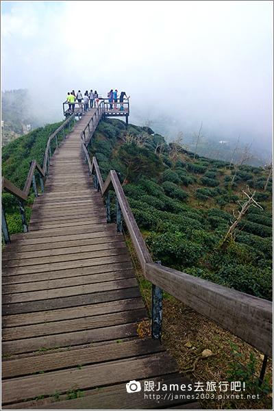 【南投旅遊】銀杏森林、大崙山茶園觀景台 05.JPG