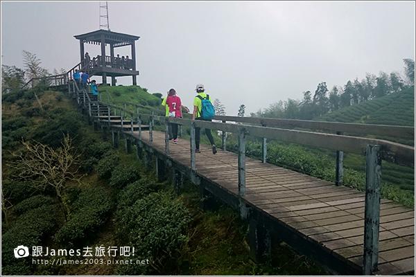 【南投旅遊】銀杏森林、大崙山茶園觀景台 07.JPG