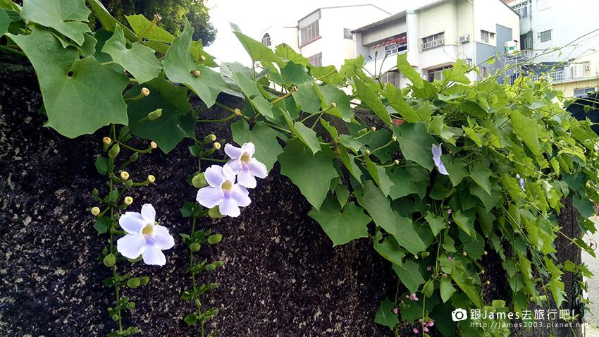 台南美景 --321巷 藝術聚落 13.jpg