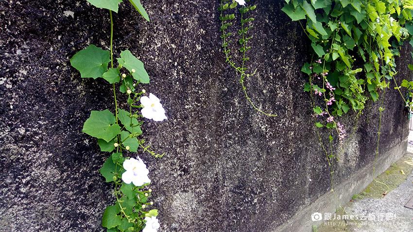 台南美景 --321巷 藝術聚落 12.jpg