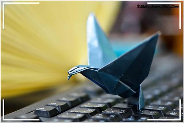 摺紙作品-老鷹