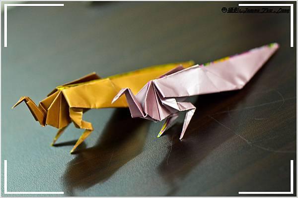 摺紙作品-雌孔雀