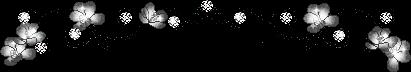 黑白花線條(411x72)