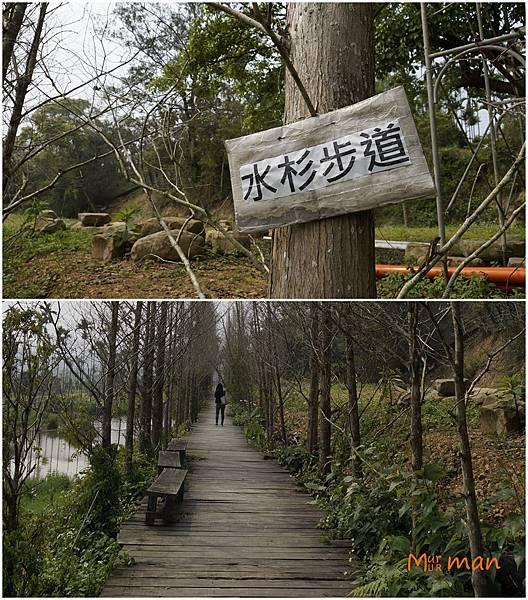 步道.jpg