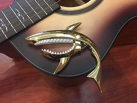 shark (3).jpg