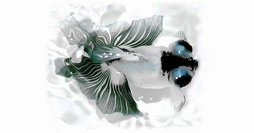 水墨金魚.jpg