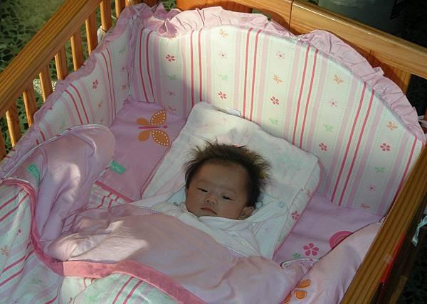嬰兒車 001
