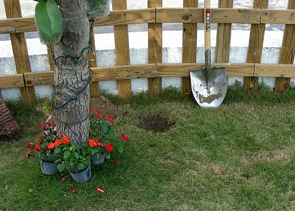 花園中的長板凳 003