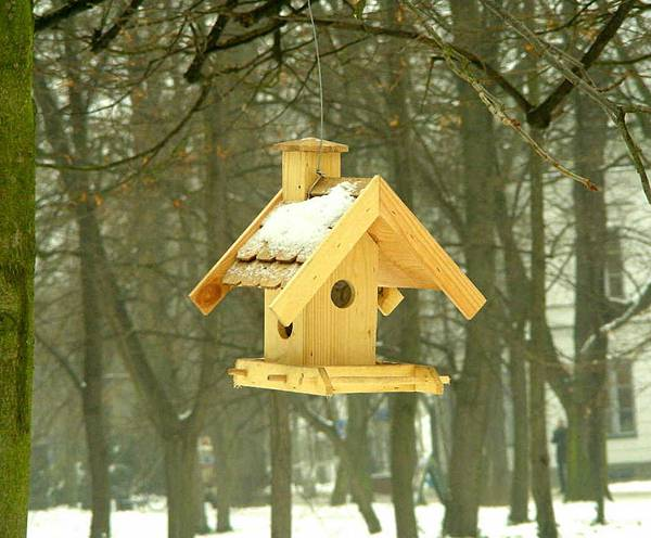 鳥屋 14