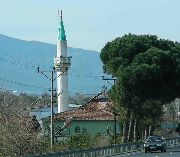 15 杜拜土耳其 229