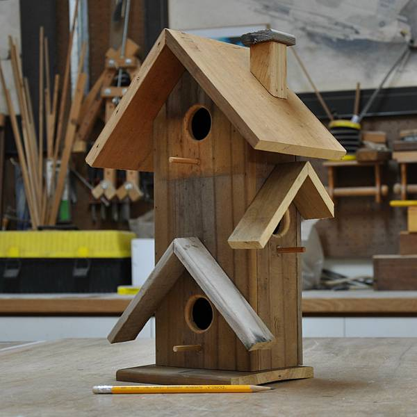 鳥公寓 (6).JPG