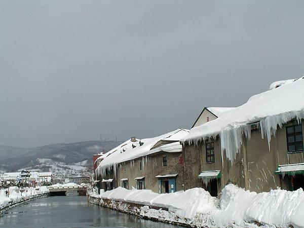 小樽運河3,聽說夏天更美