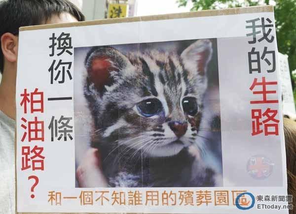 弱勢的動物不會抗爭,永遠沒有發言權,任人類宰割