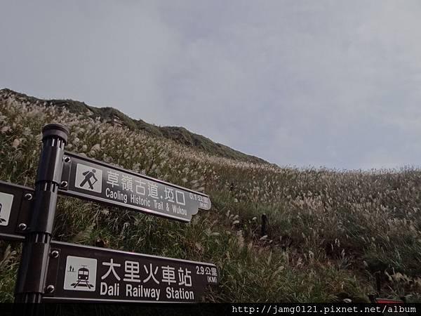 2013草嶺古道芒花季_13.JPG
