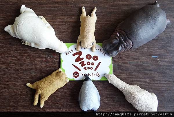休眠動物園第二彈_25.JPG