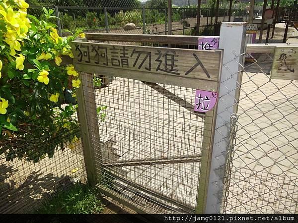 台灣也有兔子島_11.JPG