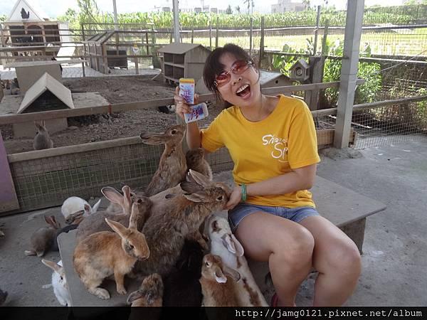 台灣也有兔子島_20.JPG