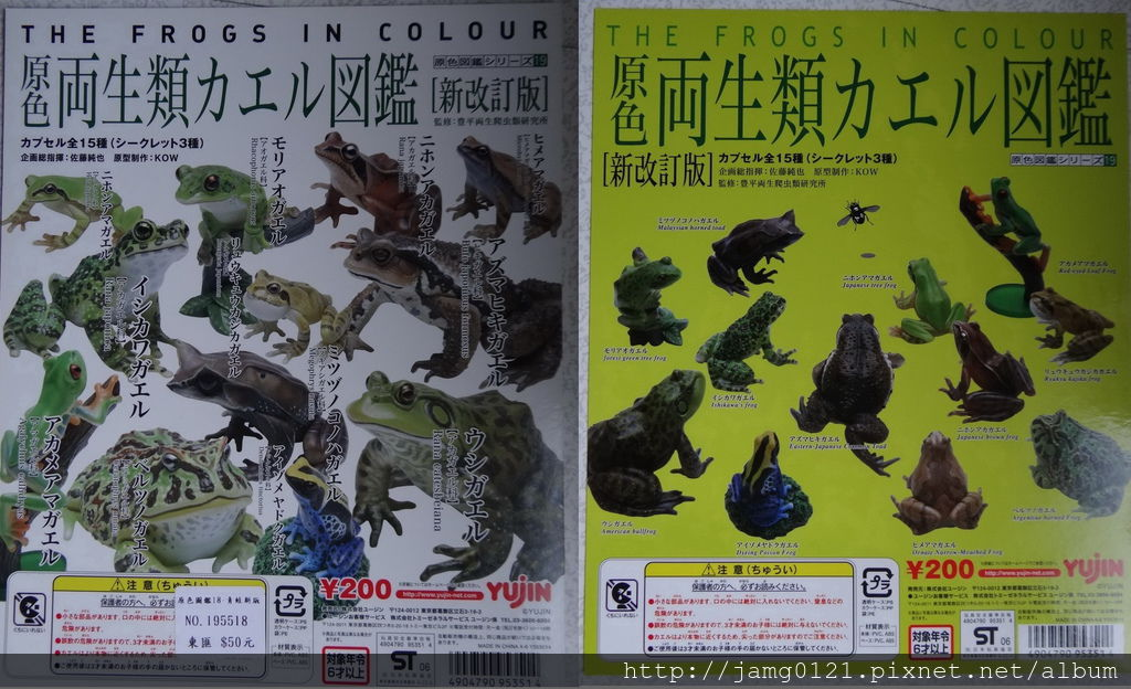 原色兩生類青蛙圖鑑_31.JPG