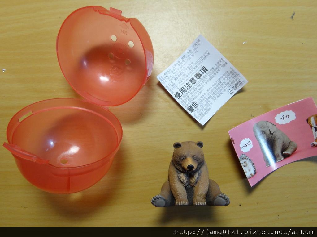 休眠動物園第三彈_12.JPG
