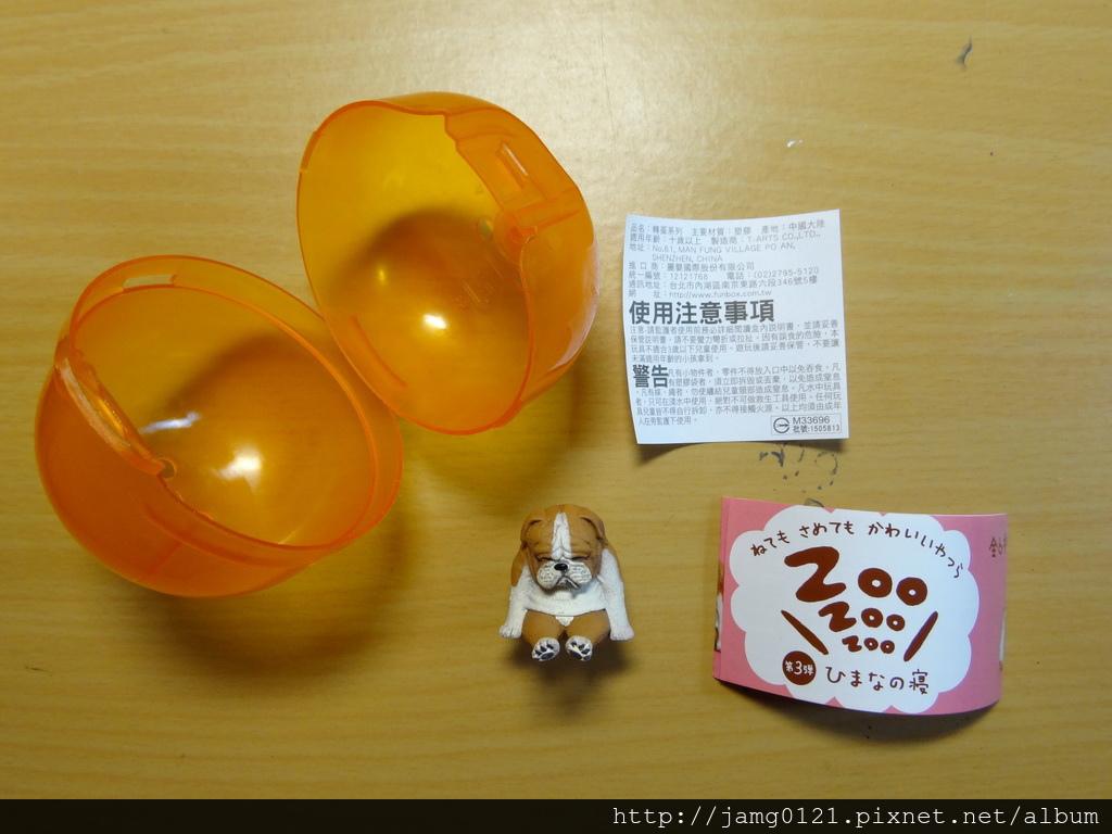 休眠動物園第三彈_18.JPG