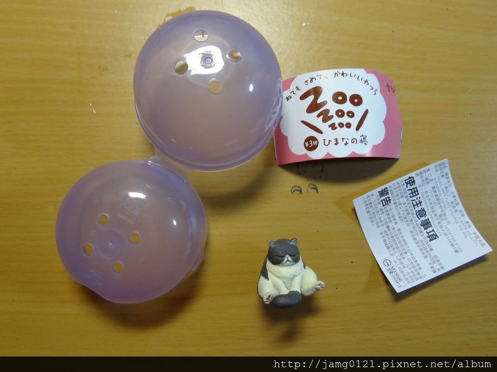 休眠動物園第三彈_24.JPG