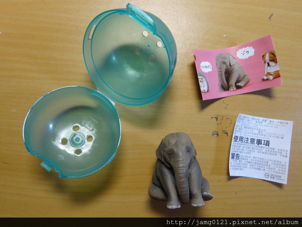 休眠動物園第三彈_36.JPG