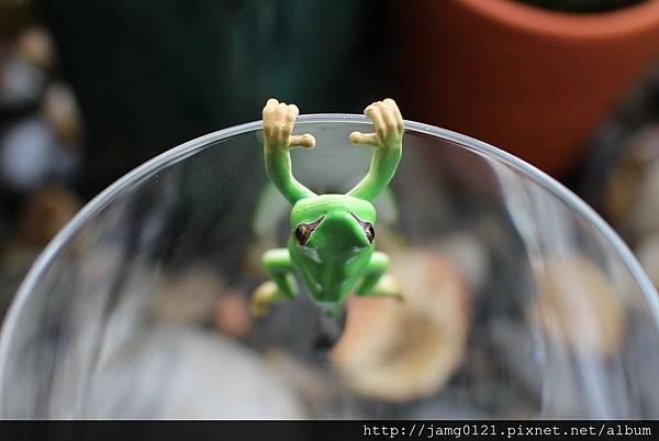 青蛙杯緣子扭蛋_06.JPG