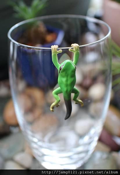 青蛙杯緣子扭蛋_07.JPG