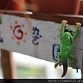 青蛙杯緣子扭蛋_10.JPG