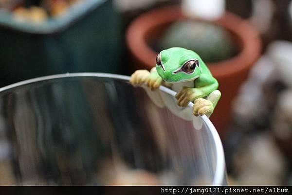 青蛙杯緣子扭蛋_21.JPG