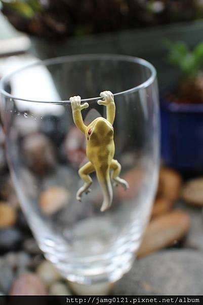 青蛙杯緣子扭蛋_26.JPG