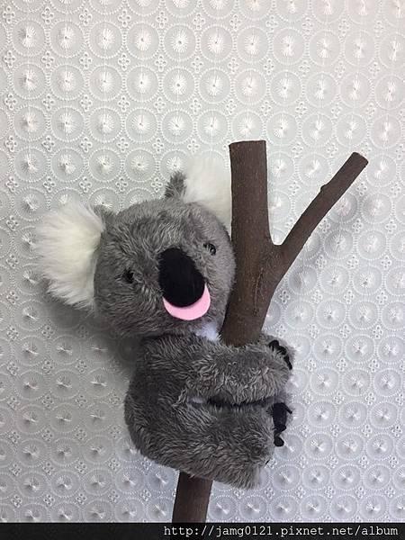 無尾熊製作_03.jpg