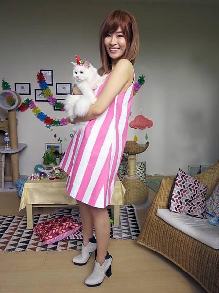 鄧福如輸給可愛貓咪首次在自己mv擔任配角.jpg