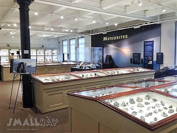 美東旅遊-波士頓_波士頓旅遊好吃好玩行程攻略-Harvard_哈佛大學_自然歷史博物館